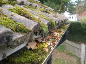 blocked gutters and downpipes